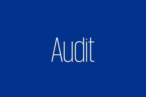 Tätigkeiten im Audit